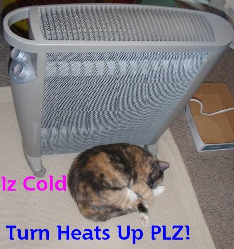 I AM COLD! MORE HEAT PLZ!